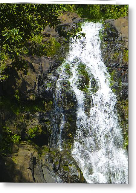 Waimea Falls Greeting Cards - Waimea Waterfall Greeting Card by Christine Cole