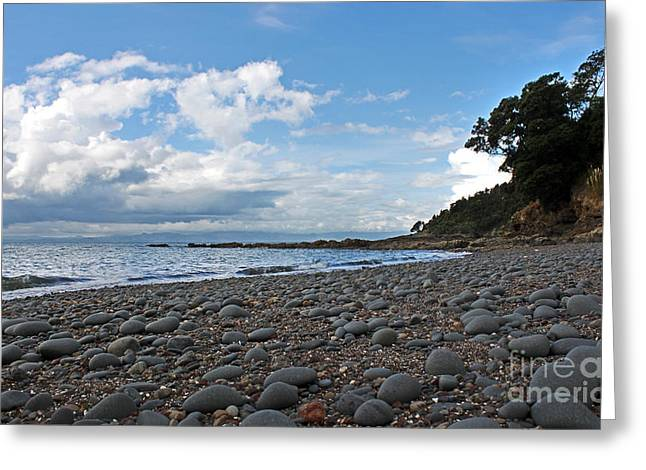 Waiti Bay Rocks Greeting Card by Gee Lyon