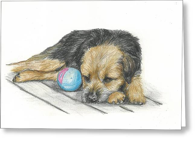 Puppies Drawings Greeting Cards - Waiting Greeting Card by Daniele Trottier