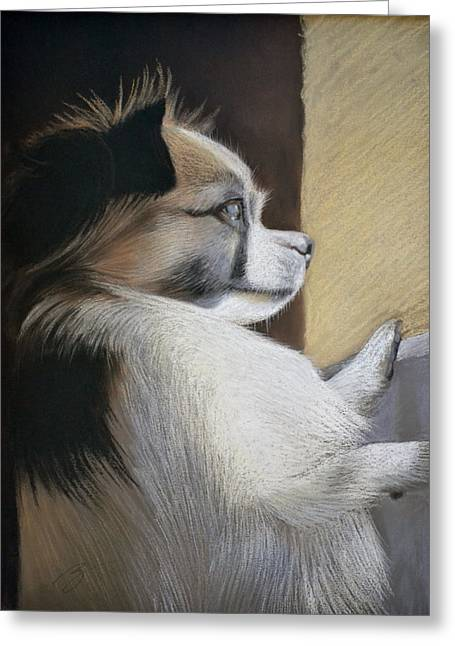 Puppies Pastels Greeting Cards - Waiting for Mommy Pastel Greeting Card by Ben Kotyuk