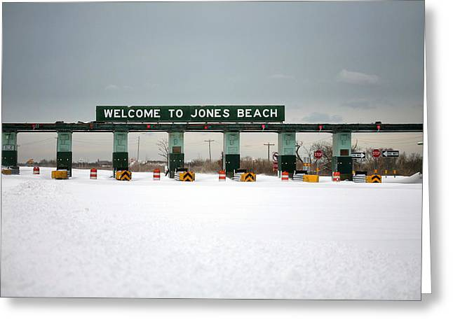 Winter Storm Nemo Greeting Cards - Waiting for Summer Greeting Card by JC Findley