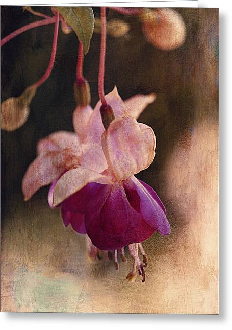 Pink Flower Branch Greeting Cards - Waiting For Sunrise Greeting Card by Maria Angelica Maira