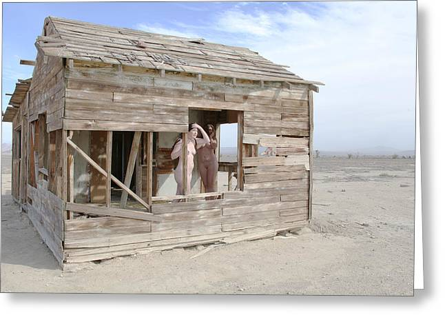 Dry Lake Digital Art Greeting Cards - Waiting For The Cable Guy Greeting Card by Ken Evans