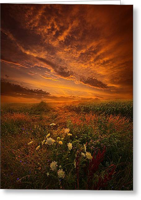 Summer Storm Greeting Cards - Waiting for the Day to Begin Greeting Card by Phil Koch