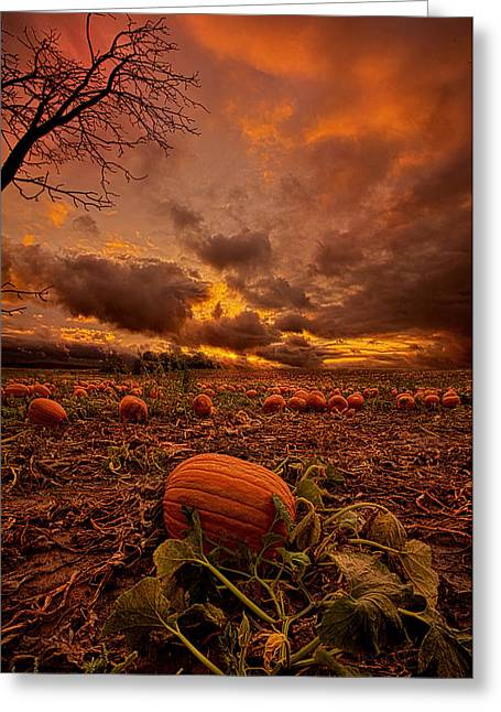 Pumpkins Photographs Greeting Cards - Waiting for the Great Pumpkin Greeting Card by Phil Koch