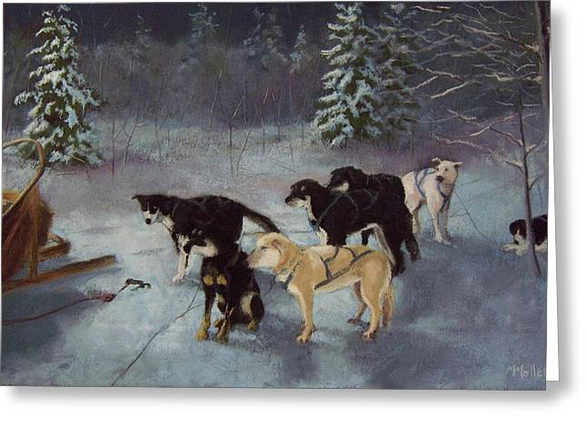 Husky Pastels Greeting Cards - Waiting for the Musher Greeting Card by Marcus Moller