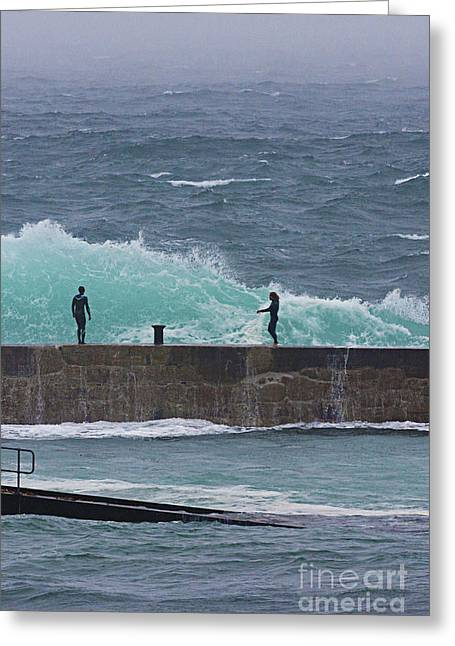 Terri Waters Greeting Cards - Waiting For The Wave Greeting Card by Terri  Waters
