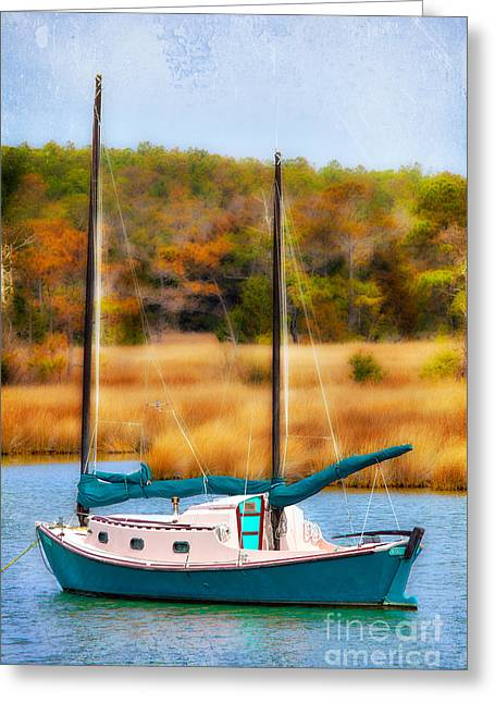 Shallowbag Bay Greeting Cards - Waiting for Wind - Outer Banks I Greeting Card by Dan Carmichael