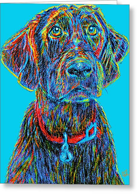 Veterinary Digital Greeting Cards - Waiting for You #2 Greeting Card by Music of the Heart
