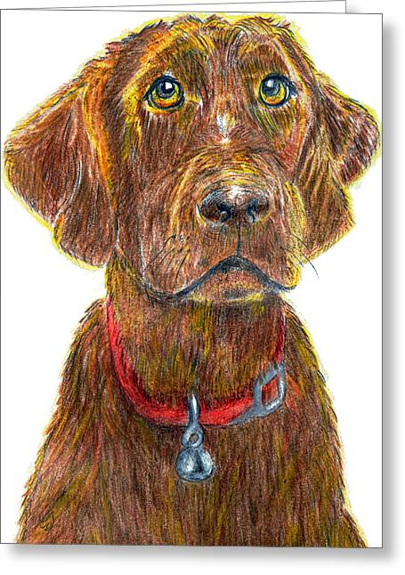 Collar Drawings Greeting Cards - Waiting For You Greeting Card by Music of the Heart