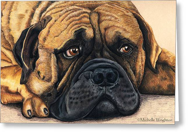 Pet Portrait Artist Greeting Cards - Waiting Bullmastiff Drawing Greeting Card by Michelle Wrighton