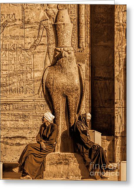 Horus Greeting Cards - Waiting Greeting Card by Nigel Fletcher-Jones
