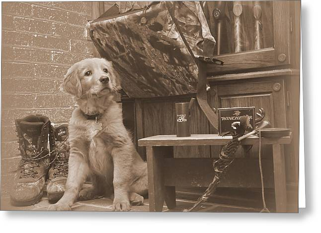 Puppies Photographs Greeting Cards - Waiting on the Spring Season Greeting Card by Todd Hostetter