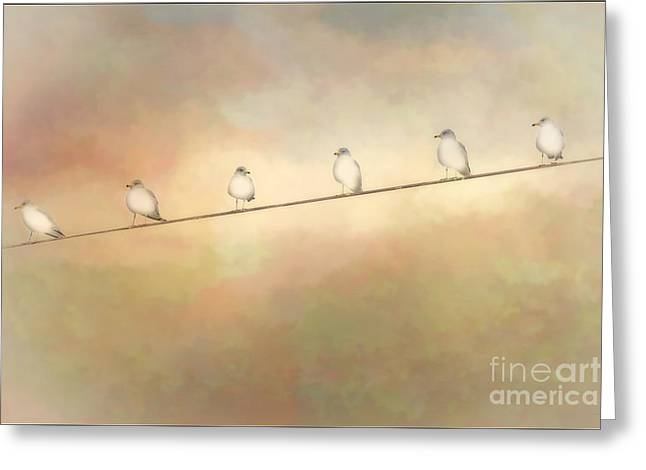 Telephone Wires Greeting Cards - Waiting On The Wire Greeting Card by Tom York Images