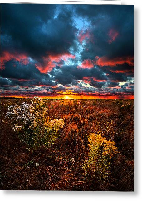 Waking Angels Greeting Card by Phil Koch