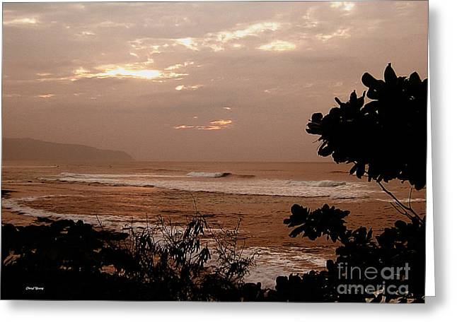 Surf Silhouette Greeting Cards - Waking Up Greeting Card by Cheryl Young