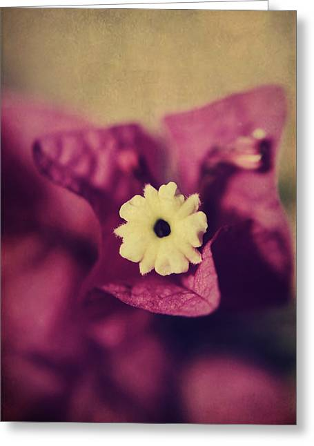 Texture Floral Greeting Cards - Waking Up Happy Greeting Card by Laurie Search