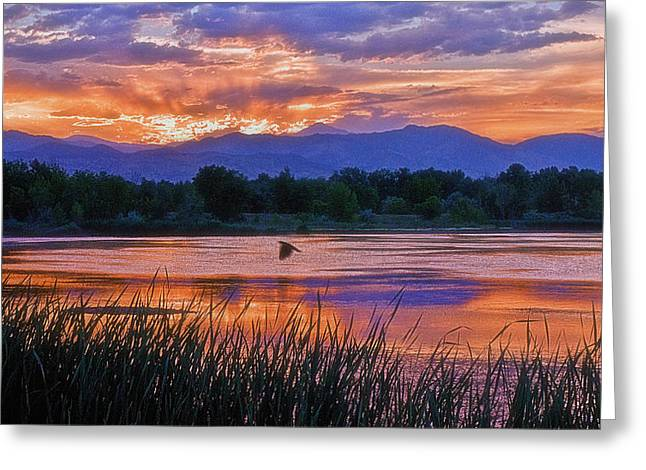 Walden Pond Greeting Cards - Walden Ponds Sunset Greeting Card by Brian Kerls