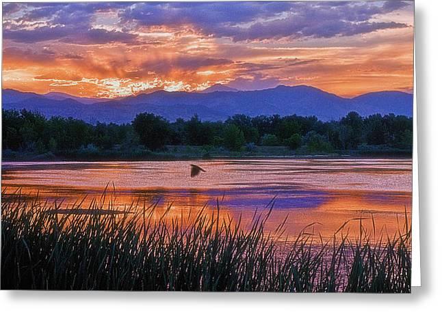 Walden Ponds Sunset Greeting Card by Brian Kerls