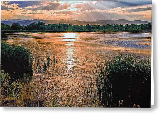 Walden Pond Greeting Cards - Walden Ponds Sunset II Greeting Card by Brian Kerls