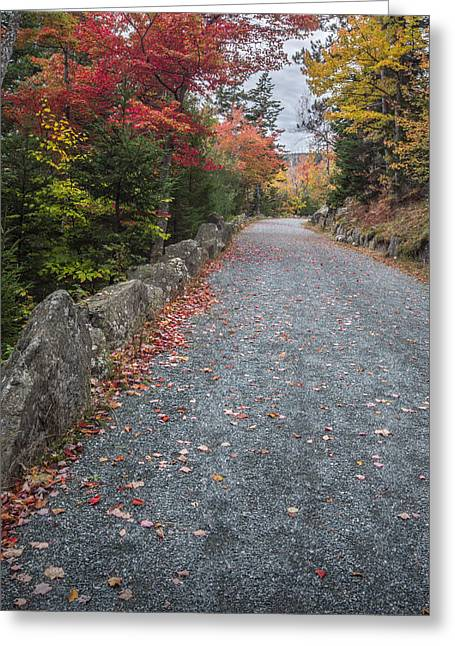 Maine Landscape Greeting Cards - Walk Along Greeting Card by Jon Glaser