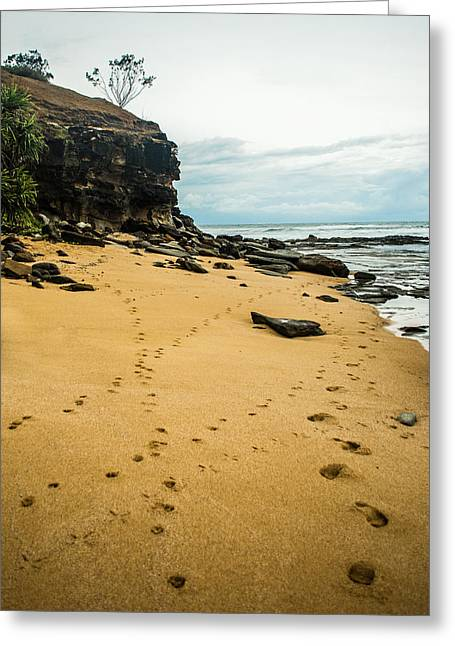 Rocks. Tidal Pool Greeting Cards - Walk Along The Beach Greeting Card by Parker Cunningham