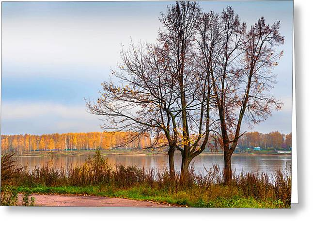 Colors Of Fall Greeting Cards - Walk Along the River Bank Greeting Card by Jenny Rainbow