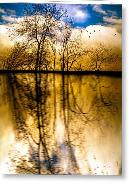 Maine Spring Greeting Cards - Walk Along The River Greeting Card by Bob Orsillo