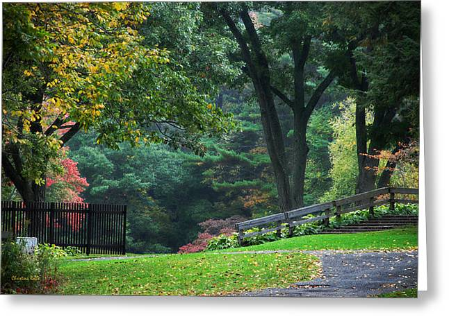 Autumn In The Country Photographs Greeting Cards - Walk in the Park Greeting Card by Christina Rollo