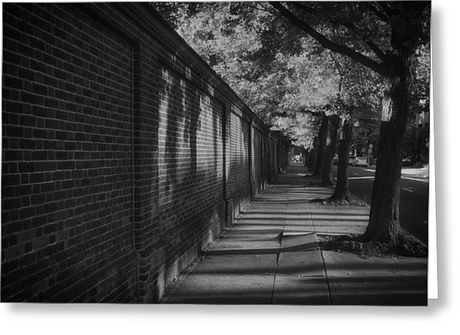 Shady Street Greeting Cards - Walk in the Shadows Greeting Card by Mountain Dreams