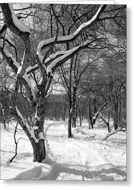 The Nature Center Greeting Cards - Walk in the snow Greeting Card by Tracy Winter