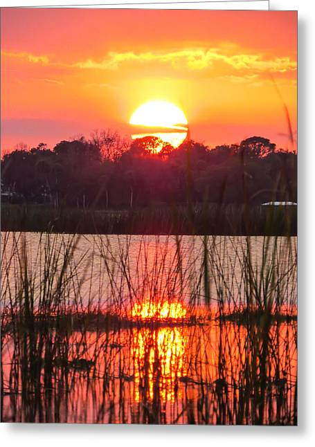Reflections In River Greeting Cards - Walk in the water sunset Greeting Card by Zina Stromberg