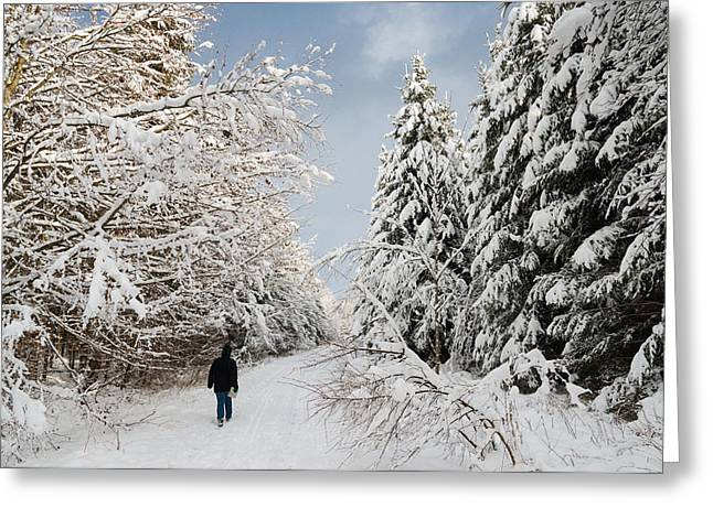 Snow-covered Landscape Greeting Cards - Walk in the winterly forest with lots of snow Greeting Card by Matthias Hauser