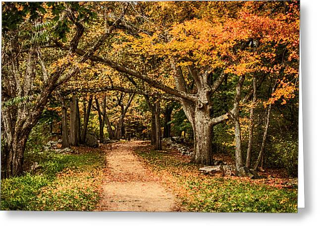 """autumn Foliage New England"" Greeting Cards - Walk in the woods Greeting Card by Jeff Folger"