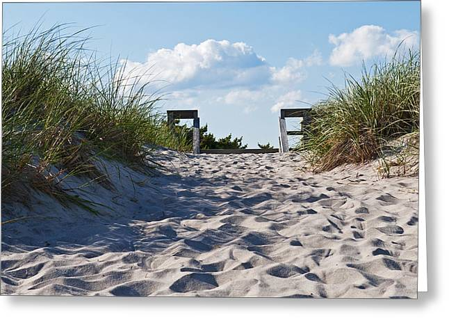 Sand Dune Greeting Cards - Walk Over Dunes Greeting Card by Alida Thorpe