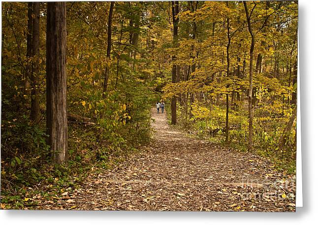 Indiana Autumn Greeting Cards - Walk slowly Greeting Card by Lynne Dohner