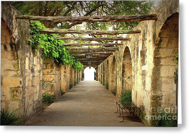 Lighted Pathway Greeting Cards - Walk to the Light Greeting Card by Carol Groenen