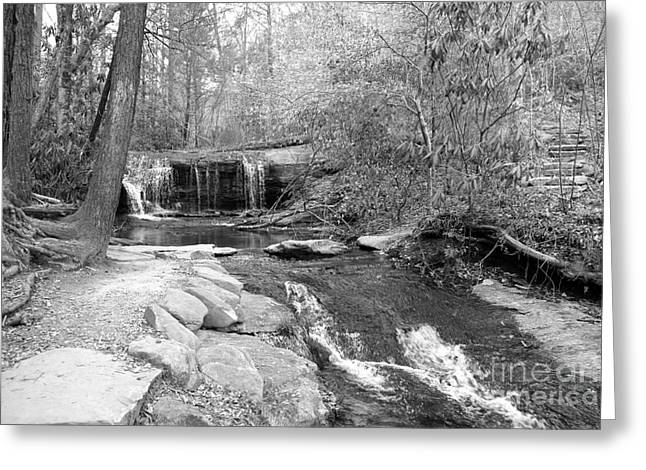 Stone Steps Greeting Cards - Walk to the Waterfall Greeting Card by Carol Groenen
