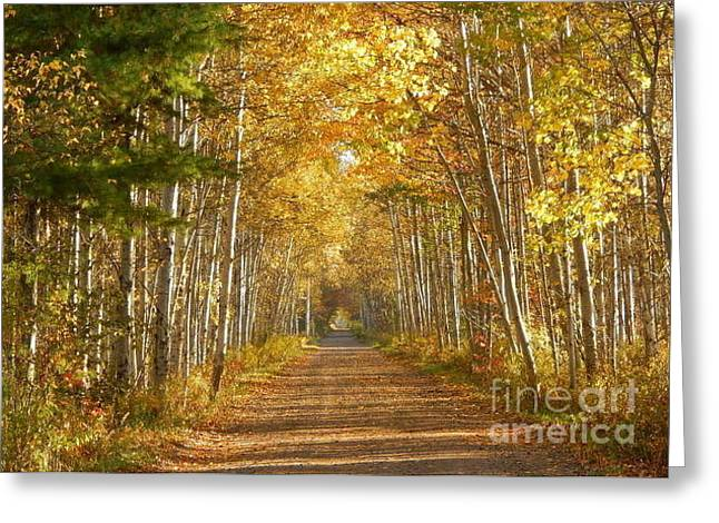 Annapolis Valley Greeting Cards - Walk with me Greeting Card by Karen Cook