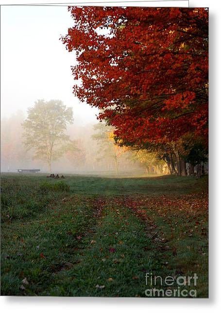 Newengland Greeting Cards - Walk With Me Greeting Card by Kerri Mortenson