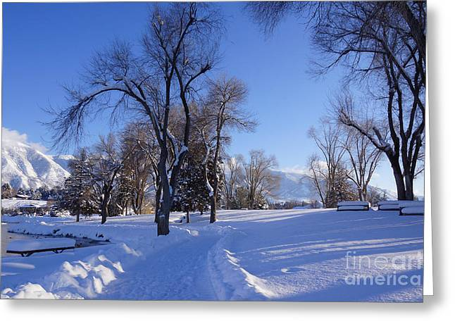 Snowy Day Greeting Cards - Walked by the Lake Greeting Card by Gloria Pasko