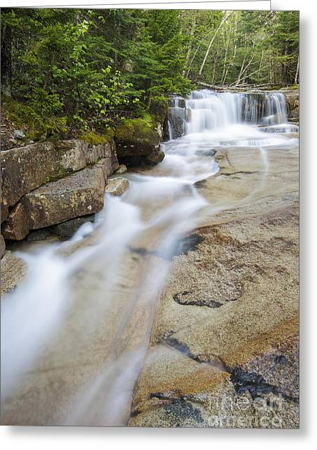 Awe Inspiring Greeting Cards - Walker Brook Cascades - Franconia Notch State Park New Hampshire Greeting Card by Erin Paul Donovan