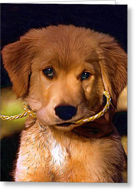 Retriever Prints Digital Art Greeting Cards - Walkies...Pleeease - Paint Greeting Card by Steve Harrington