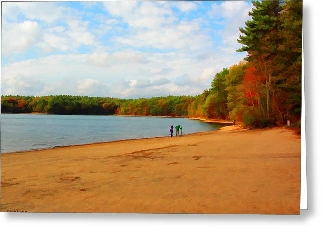 Walden Pond Greeting Cards - Walking at Walden Pond Greeting Card by Tom Christiano