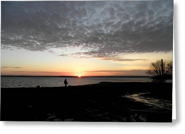 Dog Walking Greeting Cards - Walking in the Sunset Greeting Card by Kate Gallagher