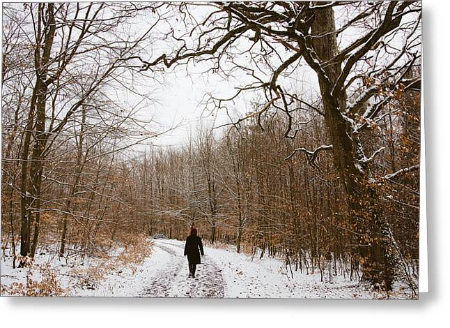 Woodland Scenes Greeting Cards - Walking in the winterly woodland Greeting Card by Matthias Hauser