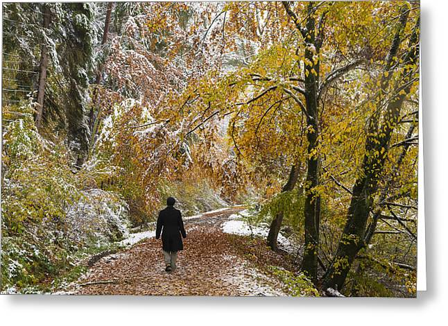 Photos Of Autumn Greeting Cards - Walking into winter - beautiful autumnal trees and the first snow of the year Greeting Card by Matthias Hauser