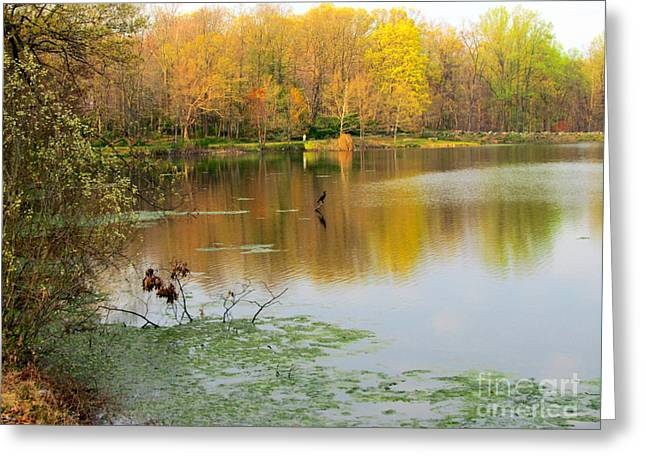 Walking On A Fall Day Greeting Card by Avis  Noelle