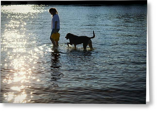 Dog Play Beach Greeting Cards - Walking On Sunshine Greeting Card by Laura  Fasulo