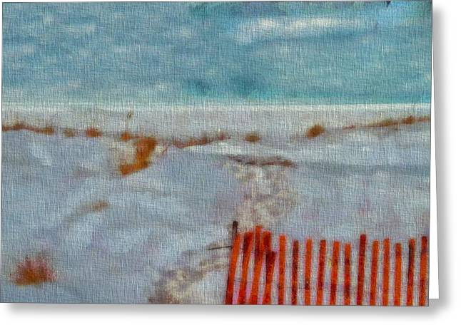 Walking On The Beach Greeting Card by Dan Sproul